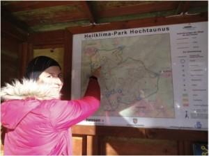 Schlittenfahren im Heilklima-Park Hochtaunus